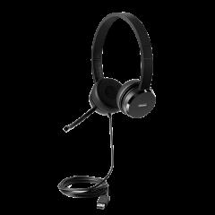 Lenovo 100 Stereo USB Headset 4XD0X88524